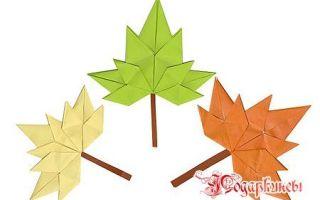 Рекомендации о том, как нарисовать кленовый лист