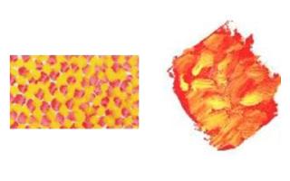 Какие лучшие масляные краски для живописи?
