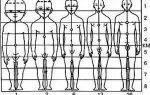 Пошаговый урок о том, как нарисовать голову человека