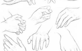 Советы о том, как нарисовать руки