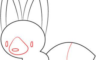 Рекомендации о том, как нарисовать лису