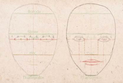 Как нарисовать лицо: основы и пропорции лица