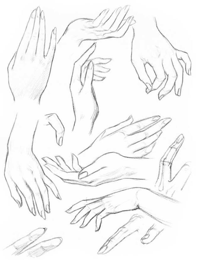 Как рисовать руки? Структура рук и кистей