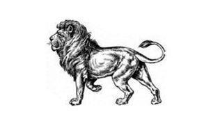 Как рисовать льва? Рисунок карандашом