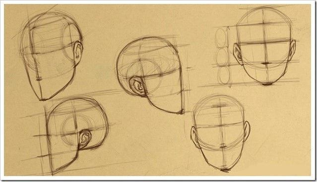 Пропорции в рисунке лица человека. Простая схема для начинающих художников