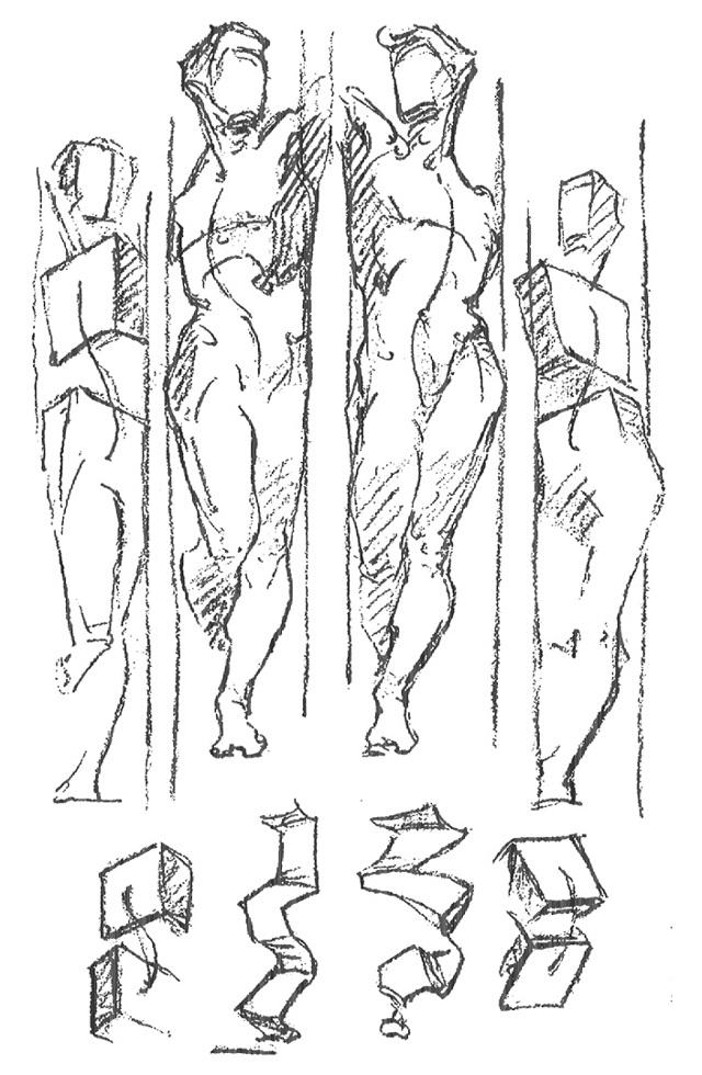 Как рисовать человека? Торс. Анатомия для художника